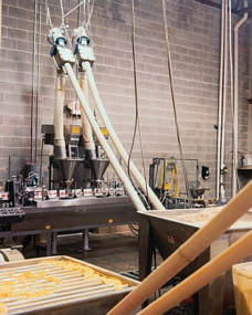 Flexible Screw Feed Variety of Bulk Products to Form/Fill/Seal Packaging Lines